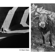 The Personal Photographic Project: Developing, exhibiting and publishing your work. A Weekend Master Class in Atlanta with Mark Maio & Tim Barnwell